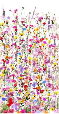 Spring (11551)