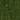 Skogsgrön Metallic Uncorked (16110)