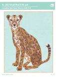 The Cheetah Abstraction (16309)